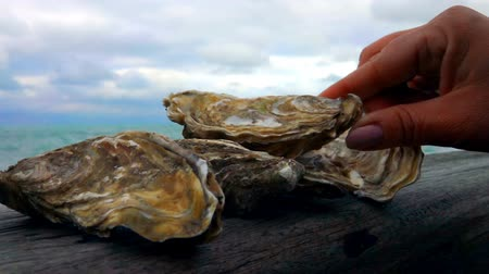 oysters : Hand lay fresh oysters on the wooden board against the ocean on a cloudy day in Etretat, France