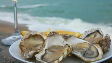 oysters : Close up of a plate full of fresh oysters and a glass of white wine against the ocean on a cloudy day in Etretat, France Stock Footage