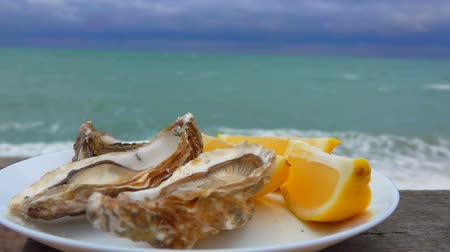 osztriga : Plate full of fresh oysters and lemons against the ocean on a cloudy day in Etretat, France