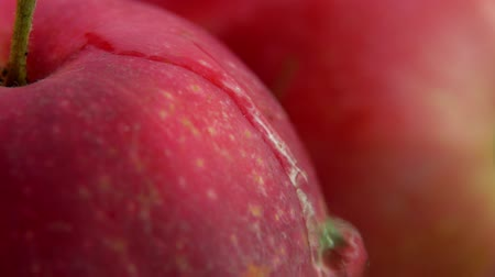 bounce : Drop of water flows down large juicy red apple. Slow motion super close-up
