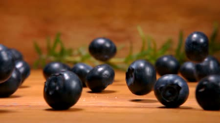 bilberry : Large ripe blueberries fall on a wooden surface of a table against the background of rosemary