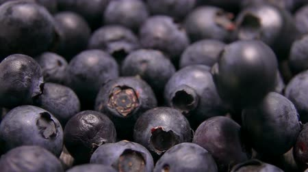 césar : Close up of a big juicy blueberries roll on background of berries