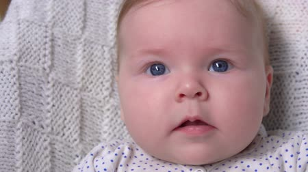 baby chubby : Close up of a sleepy blue-eyed baby laying on a white blanket and looking curiously at the camera