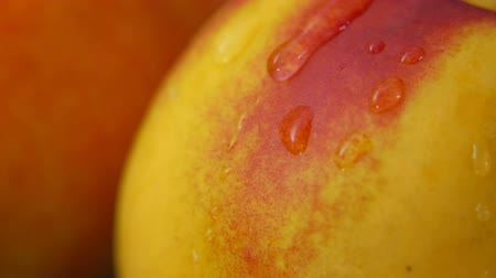 pesche noci : Super close up of nectarine surface with a drop of water slowly flowing down