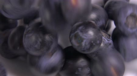 c vitamini : Close up of a big juicy blueberries fall into a white bowl