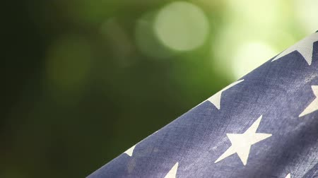 боке : detail of American flag against a green bokeh background