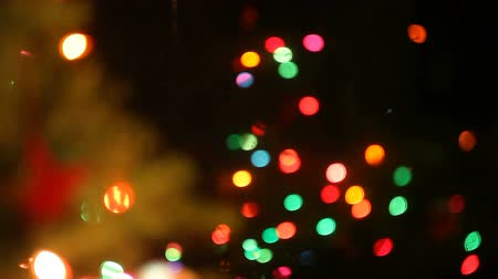 holidays : holiday lights