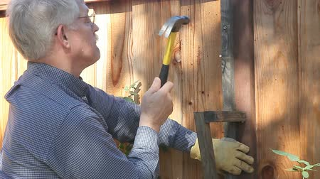 martelo : Older man builds a trellis on his wood fence.