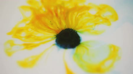 gracioso : Colorful paints form a flower shape with dark yellow petal areas.