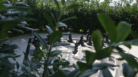 taktika : outdoor big chess in the garden