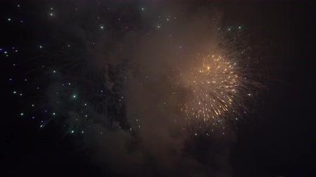 Fireworks blowing in night sky