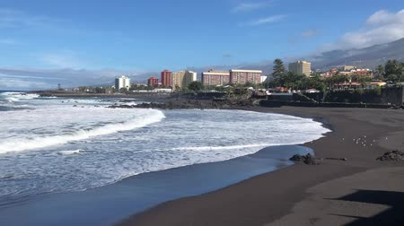 beach with black sand, Playa Jardin, Puerto de la Cruz de Tenerife, Spain