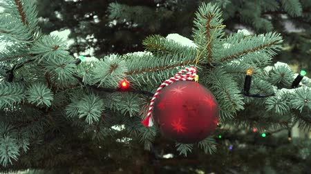 kâr : Christmas red ball hanging on evergreen tree with glowing garland, falling snow in background Stok Video