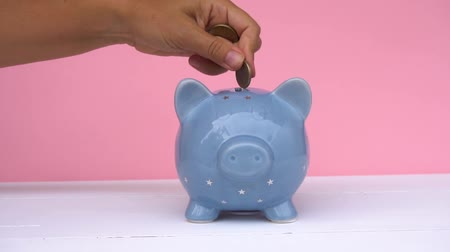 svině : Someones hand putting coin into piggy bank on white and pink background, savings concept Dostupné videozáznamy