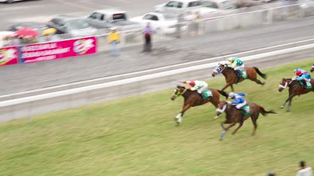 horse racing : A group of horses compete against each other and pass by really fast. Horserace situation at the mauritian turf club in port louis. Spectators watch the racing horses. Stock Footage