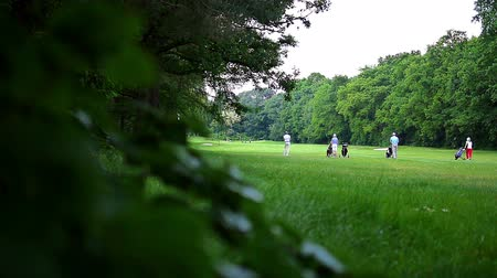 kurs : A group of people playing golf at a golf course on a summer day. The view is out of a bush.