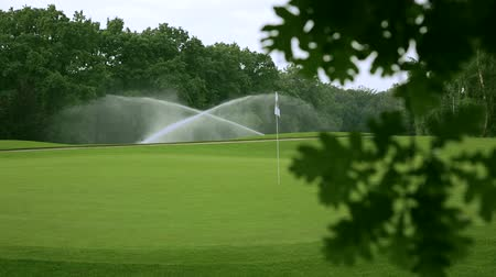 golfové hřiště : in the front is a blurred branch of an oak and in the background the golf course with sprinklers and a white golf flag.