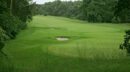 поле для гольфа : view above a golf course in Germany. the grass is beautiful green and in the middle are two sand traps. Стоковые видеозаписи