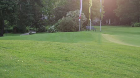 поле для гольфа : A golf course on a sunny day in Germany. in the background are trees, flags and a bench.