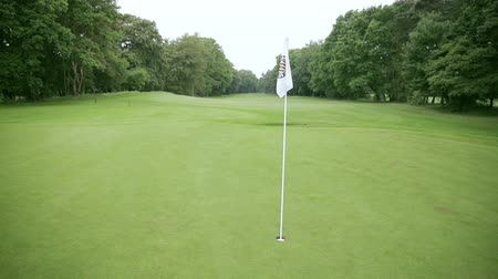 kurzus : white flag at a golf course standing in the middle of a green meadow and forest around.