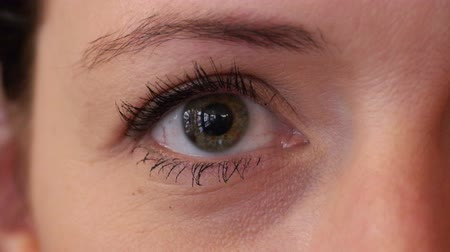 olhares : Close-up of a womans eye. Her green eyes look directily into the camera and she blinks from time to time. Vídeos