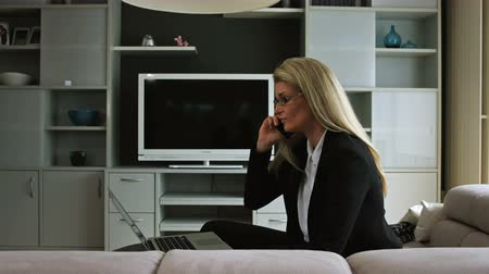 ıvır zıvır : A business woman working from home talks on the phone. In the background there is a television stand with shelves and trinkets.