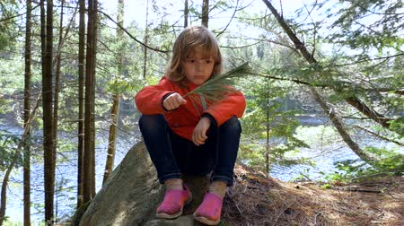 gałązki : A little girl holding a twig of pine needles sits on a rock in a forest. The weather is clear and a river flows behind her. Long shot. Wideo