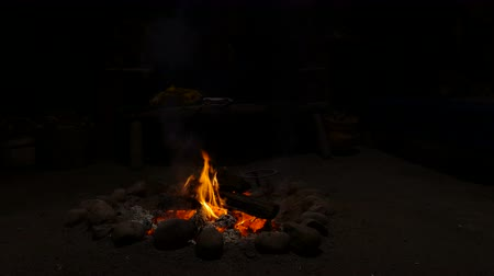 kamp ateşi : A bonfire flame burning in darkness. Medium shot. Stok Video