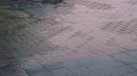 dlaždice : Rain pours down in street tiles in Niagara Falls, Ontario. Close up. Dostupné videozáznamy