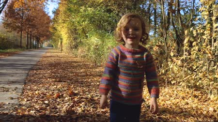 worms eye view : A little girl throws a handful of autumn leaves in the air and happily walks towards the camera.