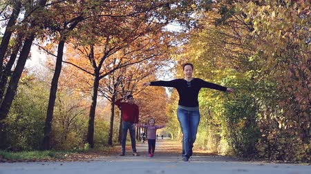 worms eye view : A couple with a child play beneath a vault of autumnal trees in a park on a warm afternoon. The child happily runs after its mother.