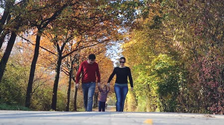 worms eye view : A couple with a child walk beneath a vault of autumnal trees in a park on a warm afternoon. They lift their daughter by the arms and she laughs joyously.