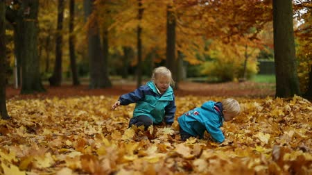 parkland : Childhood moments: pair of siblings play on fallen autumn leaves in a park. Full body shot. Selective focus. Slow motion.