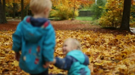 parkland : Childhood moments: children playing with autumn leaves. Upset boy and laughing girl. Slow motion. Medium shot. Selective focus