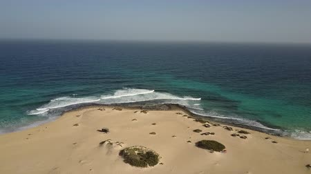 Golden beach sands and ocean waters in Fuerteventura, Canary Islands. Drone shot. Stok Video
