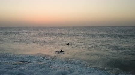 Morning light and horizon over ocean waters. Pair of surfers swimming in the ocean. Aerial shot. Horizon over water.