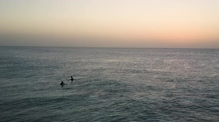 vanishing point : Dawn in the Atlantic Ocean. Pair of surfers taking an early morning swim with their boards. Aerial shot.