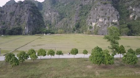 ninh : Flying over a rice field towards a limestone mountain in rural Ninh Binh, Vietnam. A road with people biking and walking in between. Aerial view. Extreme long shot. Stock Footage