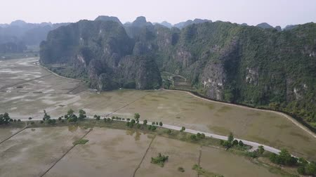 ninh : Drone panorama of paddy fields and limestone mountains in Ninh Binh, Vietnam. A rural road runs below. Drone shot. High angle view. Stock Footage