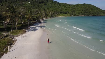 tank top : Man walking on tropical island beach. Waves gently roll. Aerial shot. Extreme long shot. Panorama. Stock Footage