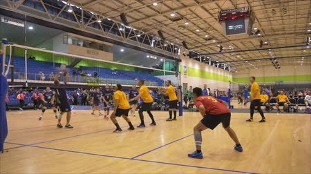 skok : Auckland New Zealand 21.04.2017 Shot of volleyball players above 30 years old gathering in the world master game 2017 at Waitakere Trust Stadium