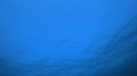 oceano : Background of Blue Water Surface. Tropical blue sea water. Sea waves. Blue Water background. Tropical underwater bubbles. Surface sea water. Blue turquoise sea water waves. Air bubbles blue surface. Vídeos