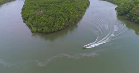 the mekong : Aerial footage The boat moves through the mangroves on the river