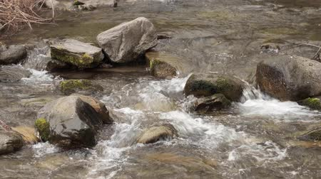 Video of water flow in a shallow stream of mountain river.
