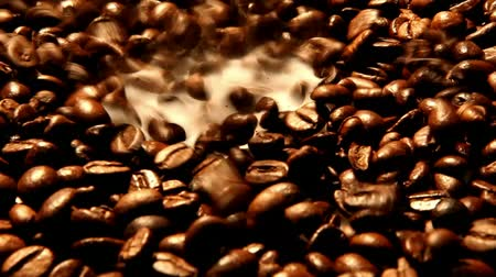 fresh coffee : Coffee Beans