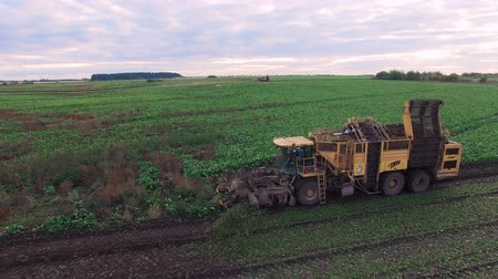 трейлер : Tractor drive in the field - aerial shot