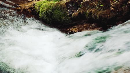 tripping : Mountain stream in Ukraine ,mountain Stock Footage