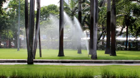 irrigate : Water sprinkler showering in the park, showing droplets dispersion