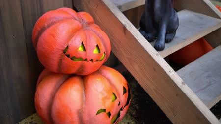 hátborzongató : Pumpkins and a black cat at the porch of the house during the Halloween.