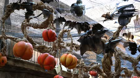 fruit bat : bats and pumpkin lanterns made from recycled plastic on halloween celebration.